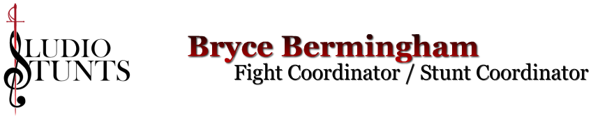 Bryce Bermingham - official website